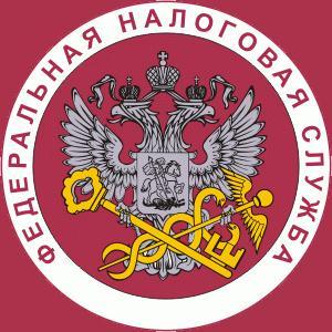 Налоговые инспекции, службы Боровичей