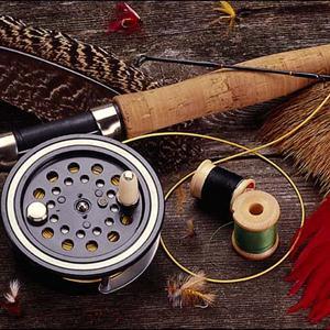 Охотничьи и рыболовные магазины Боровичей