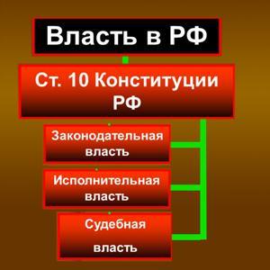 Органы власти Боровичей