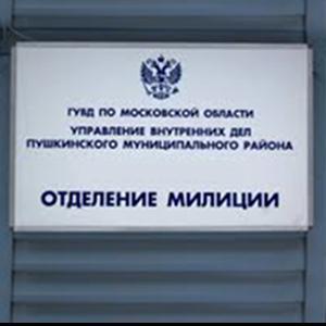 Отделения полиции Боровичей